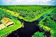 Đôi nét Đồng bằng sông Cửu Long
